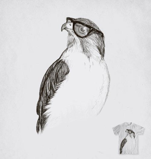Hawk with Poor Eyesight