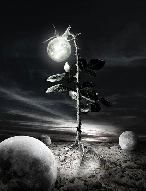 Under The Last Moon