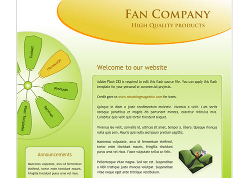 Fan Company Flash Website