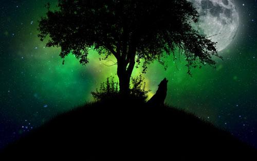 Midnight Moonsong