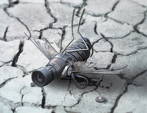 Create a Spy Fly photo manipulation