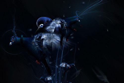 Create a digital illustration using birds