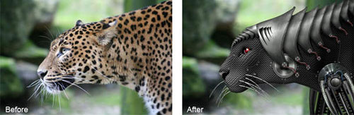 How to Create a Cyborg Leopard