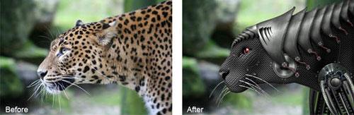 How to Create a Cyborg Leopard