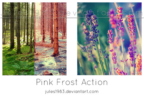 PD: Pink Frost Action por Jules1983