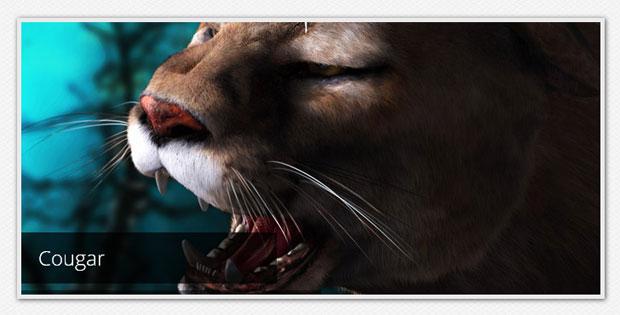 10 Amazing Pure CSS3 Image Sliders