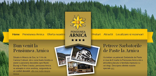 Pensiunea Arnica