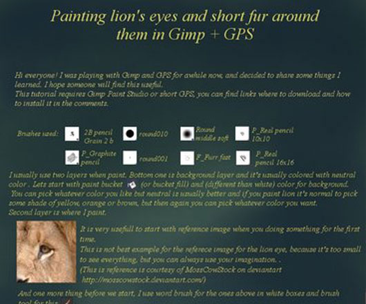 Painting lions eye and fur...