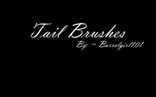 Mane and Tail Brushes II