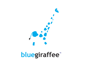 proposal for blue giraffee. a giftstore and handicraft