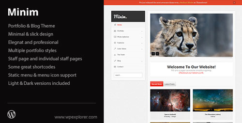 Minim - Portfolio/Small Business WordPress Theme