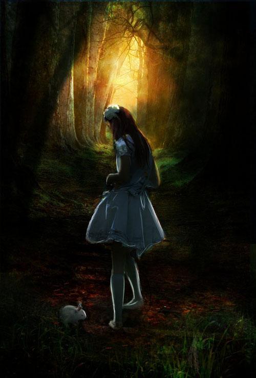 Forever in Wonderland