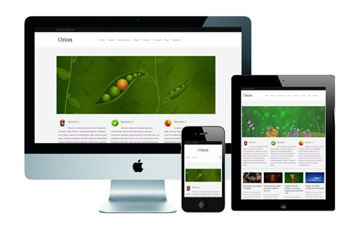 Orion – Responsive WordPress Theme