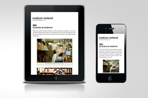Codium Extend – Responsive WordPress Theme