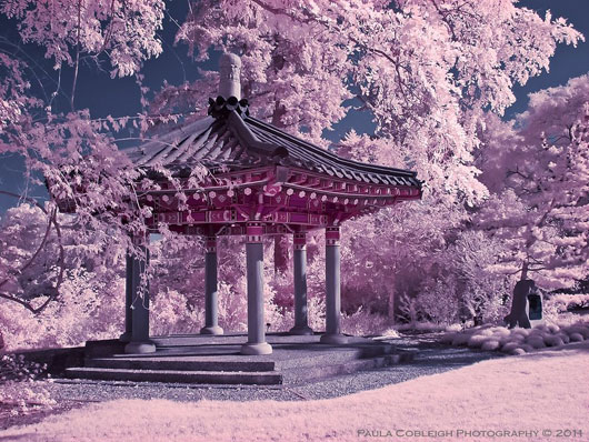 Infrared Korean Pavilion
