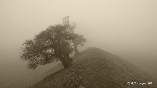 Through The Mist 3