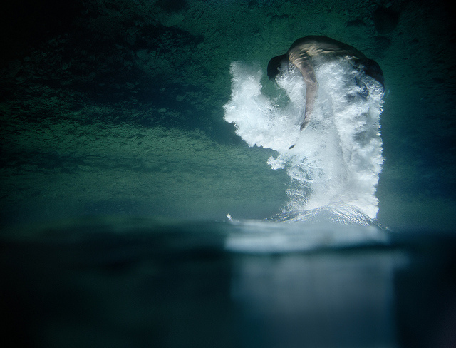 50 Brilliant Examples Of Underwater Photography