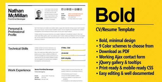 Bold   CV Resume Template   Minimal U0026 Smart