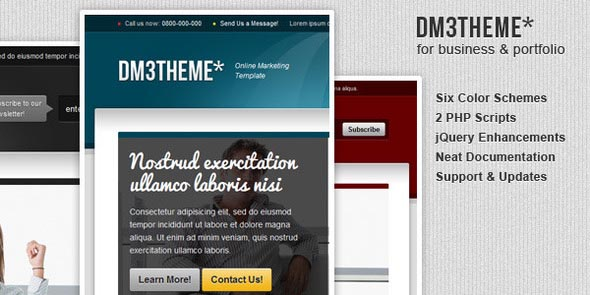 DM3THEME - 6in1 Services Marketing Template