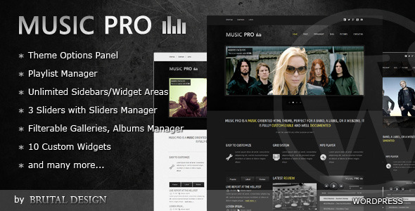 Music Pro - Music Oriented WordPress Theme