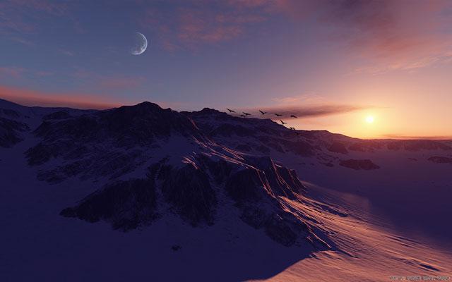 Winters serenade