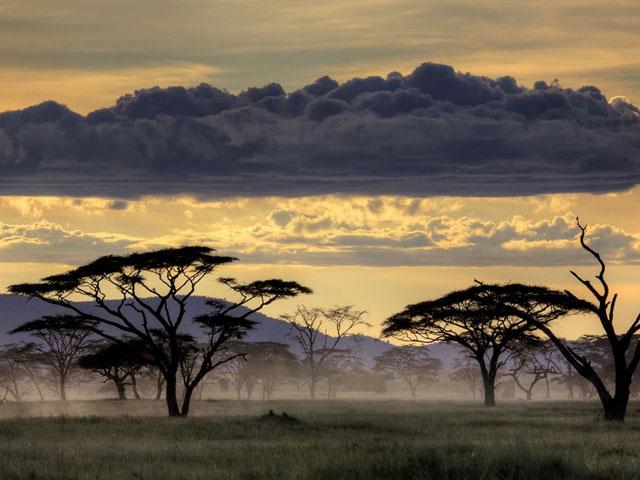 Serengeti Sunset Photo