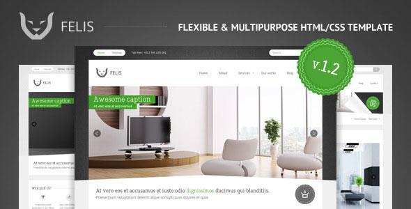 Felis - Flexible & Multipurpose html/css template