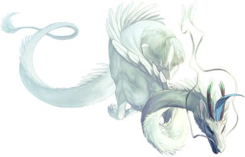 Nyroc Dragon
