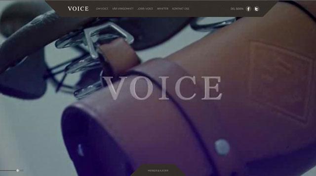 Voice Norway