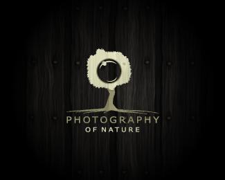 120 beautiful nature logo designs web graphic design bashooka photography of nature publicscrutiny Choice Image