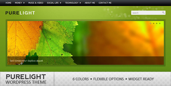 Purelight WordPress Theme