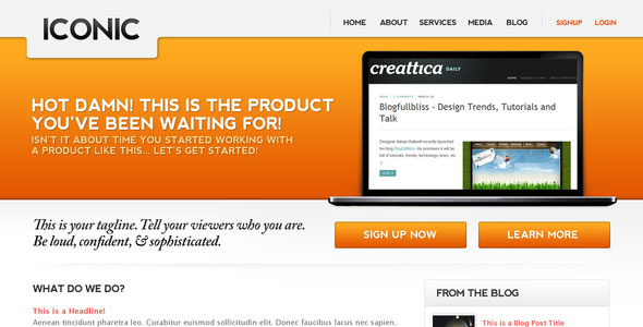 Iconic, a bold new professional web layout.