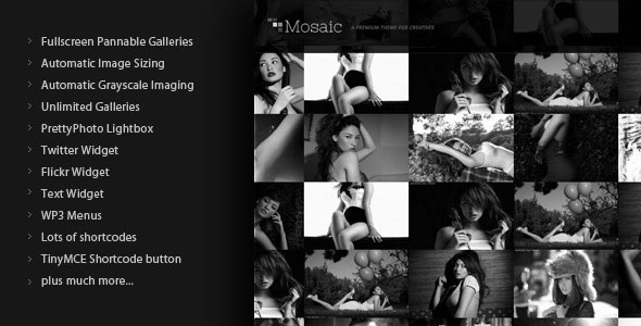 Mosaic WordPress Theme