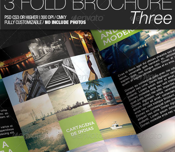 3 Fold Brochure III