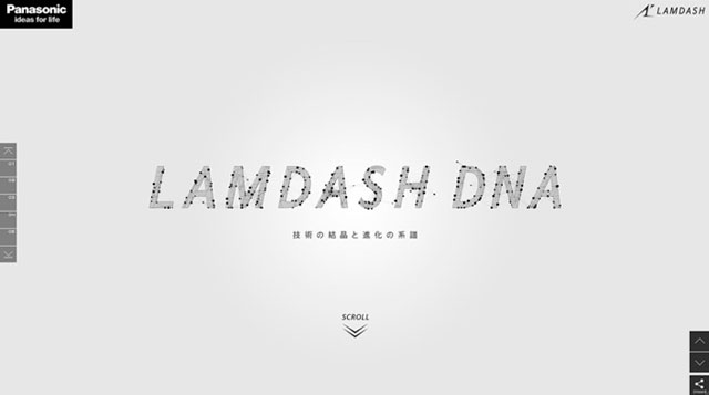 LAMDASH DNA