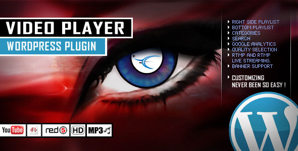 Video Player WordPress Plugin - YouTube/FLV/H264