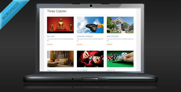 TS Display - Portfolio and Gallery Plugin