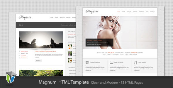 Magnum - Business and Portfolio HTML Template