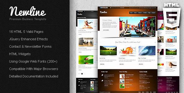 84 best corporate html website templates web graphic design newline premium business template friedricerecipe Image collections