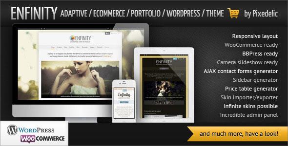 Enfinity  Adaptive Ecommerce Portfolio WP theme