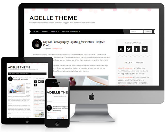 freee-wp-themes-6