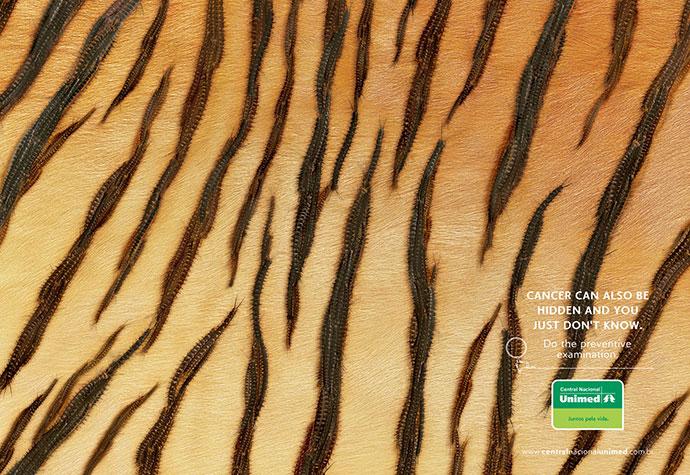 Central Nacional Unimed: Tiger