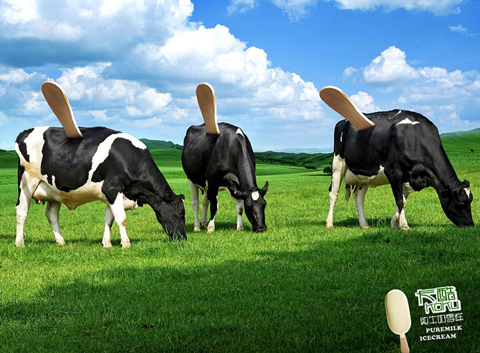 Kaku Puremilk Icecream: Cow