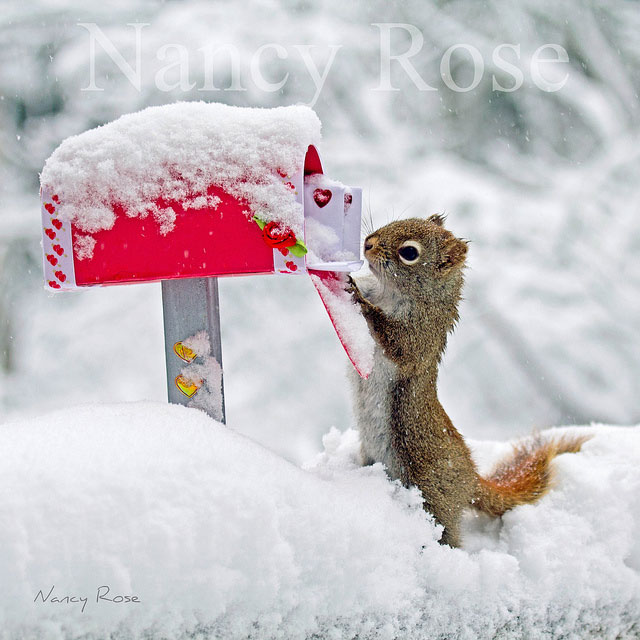 Don't forget to send valentines to all your favourite friends!