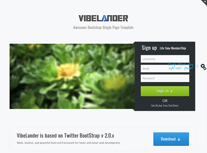 80 High Converting Landing Page Templates | Web & Graphic Design ...