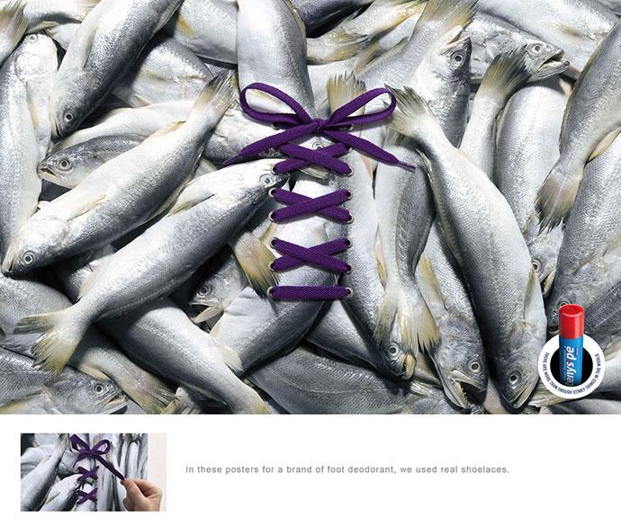 Baruel: Fish