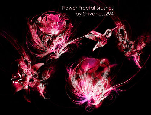 Flower Fractal Brushes