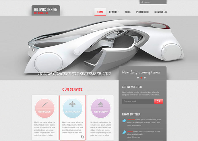 Bilivus Design - PSD