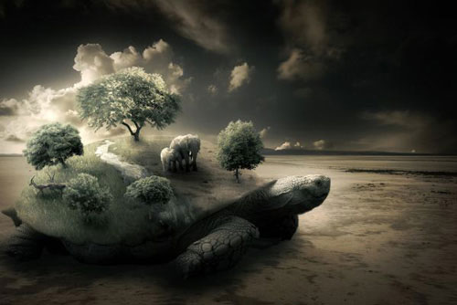 Surreal Turtle Image