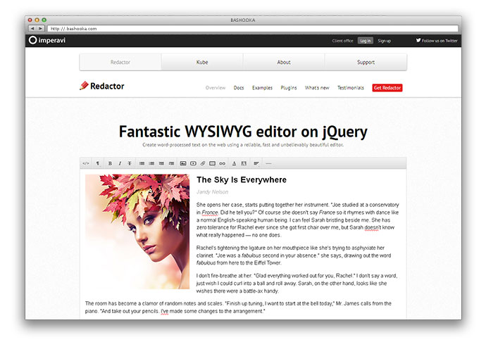 14 Best WYSIWYG HTML Editors | Web & Graphic Design | Bashooka